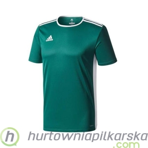Koszulka adidas Entrada 18 Junior CD8358