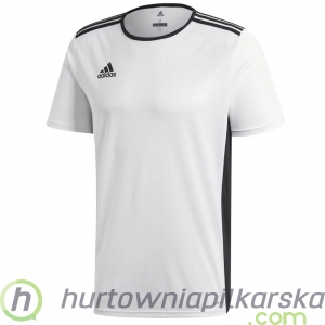 Koszulka adidas Entrada 18 Junior CD8438