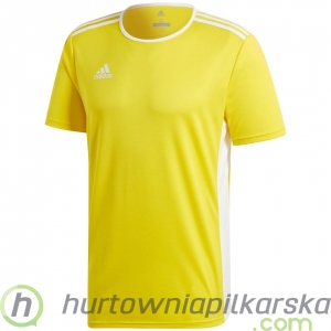 Koszulka adidas Entrada 18 Junior CD8390