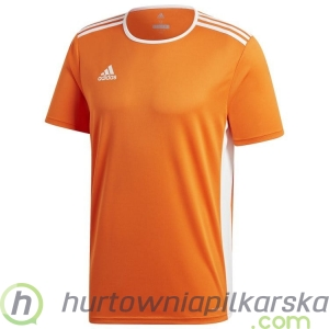 Koszulka adidas Entrada 18 Junior CD8366