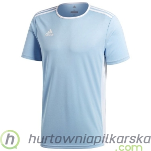Koszulka adidas Entrada 18 Junior CD8414